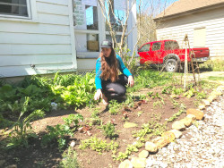 Finding solace in nature's restorative powers, Kailani Clarke '20 planted a vegetable garden in the front